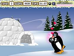 Penguin Kissing