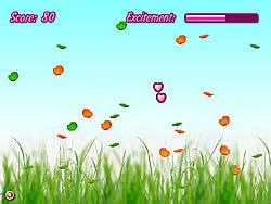 Bubble Flies