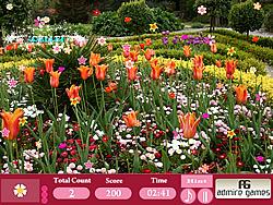 Flower Garden-Hidden Objects
