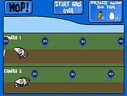 Ryo Race