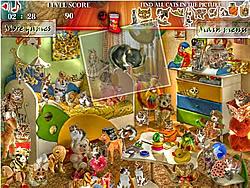 Cats Room