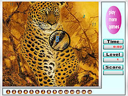 Fabulous tigers hidden numbers